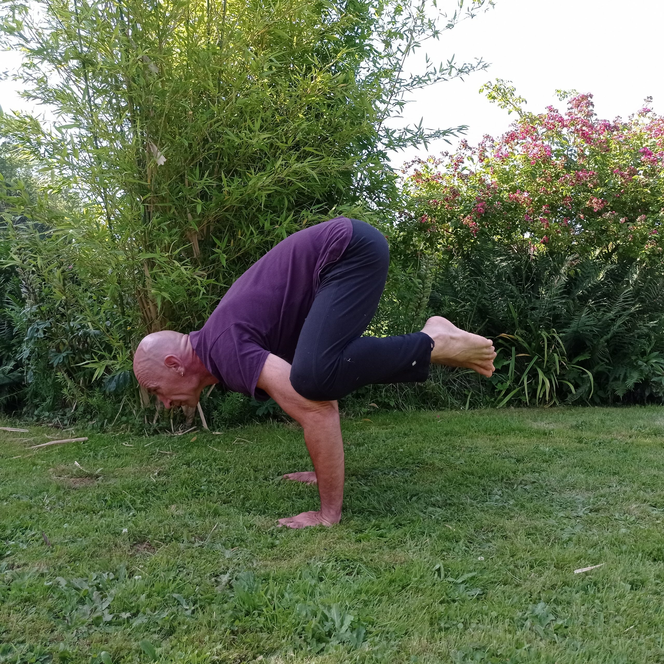 Didier Lingée, Hatha Yoga